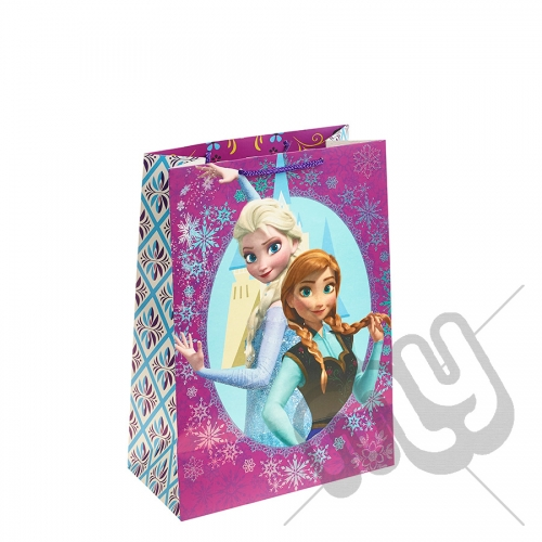 Queen Elsa & Princess Anna with their Castle Gift Bag - Large x 1pc