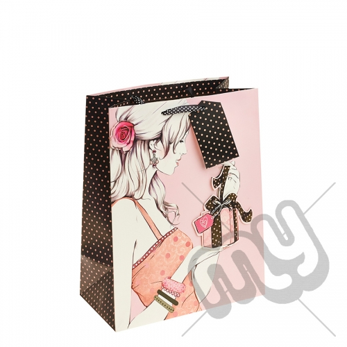 Elegant Lady and a Small Present Gift Bag with Glitter & Crystal Detail - Large x 1pc