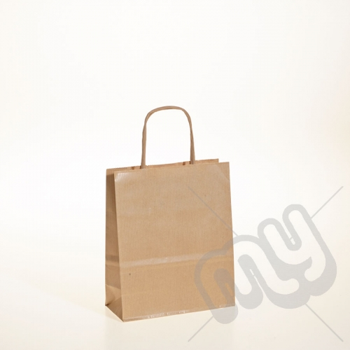 Brown Kraft Paper Bags with Twisted Handles - Small x 25pcs