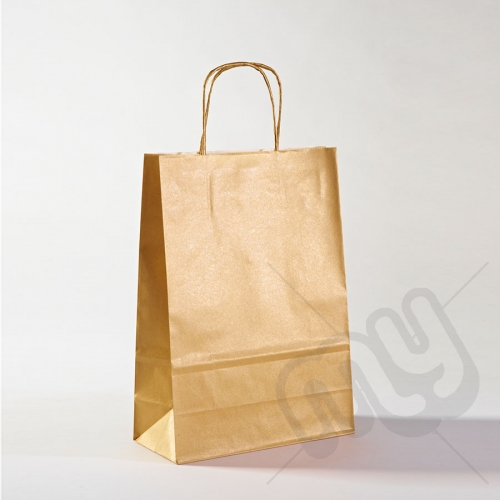 Gold Kraft Paper Bags with Twisted Handles - Medium x 25pcs