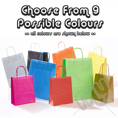 Kraft Paper Bags with Twisted Handles, Party Pack - Medium x 10pcs