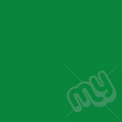 Green Tissue Paper - 1 Ream
