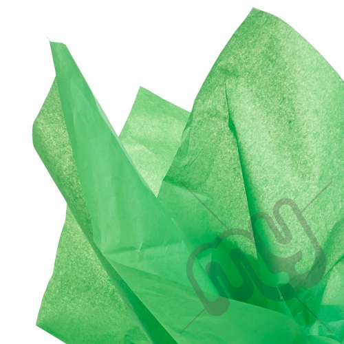 Green Tissue Paper - 6 Sheets