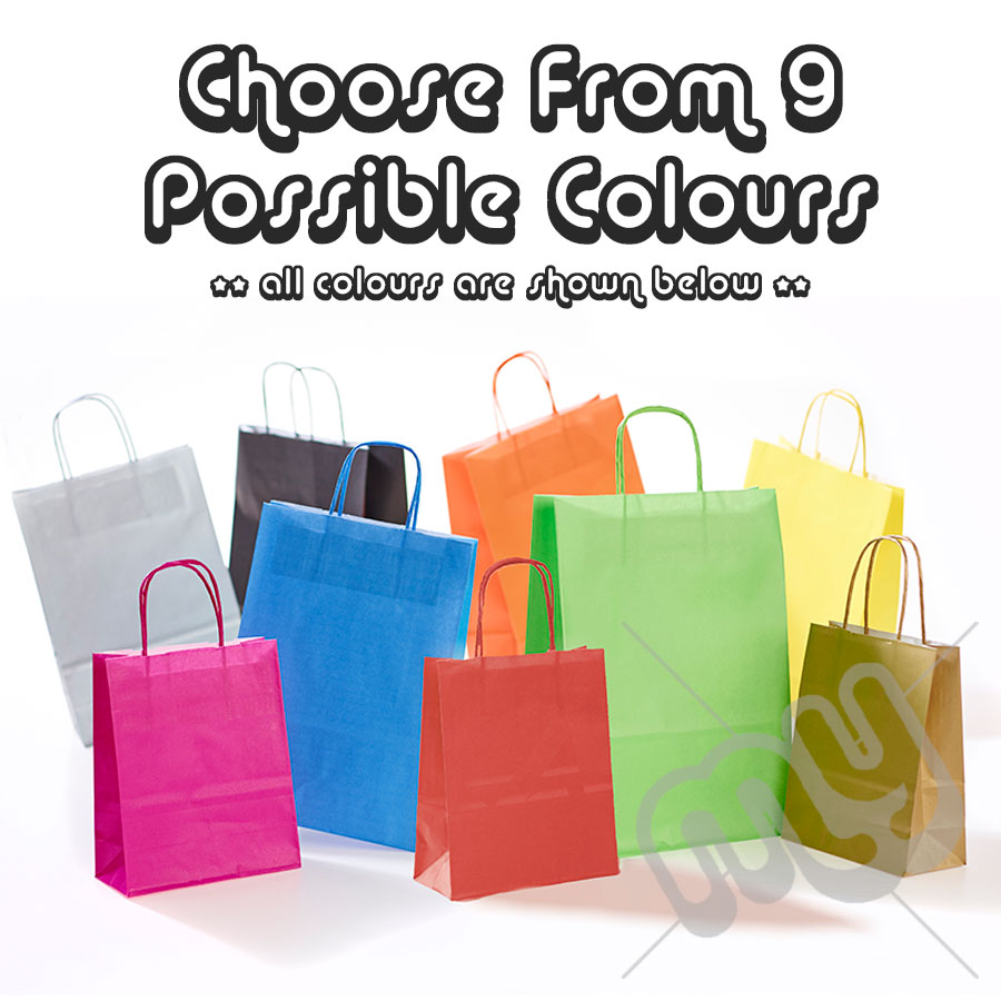 01eb8924cd1e Kraft Paper Bags with Twisted Handles